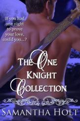 oneknightcollection.jpg.opt264x398o0,0s264x398[1]
