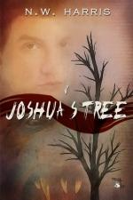 Joshua___s_Tree_51b20984e6dc6[1]