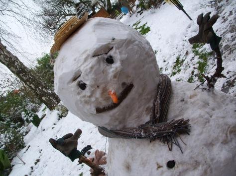 Christmas 2012 and January Snow 093