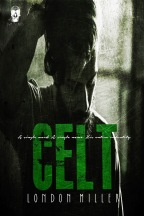 9113a-celt