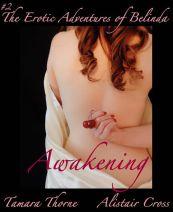 awakeningfinal