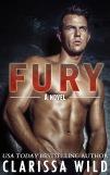 cover fury kindle (1)