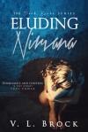 Eluding Nirvana